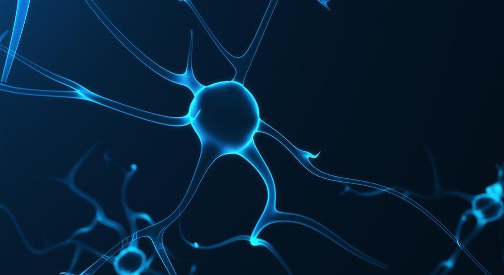 diplomado abordaje de las complicaciones en el daño cerebral adquirido para el médico rehabilitador