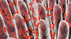 posgrado microbiota humana