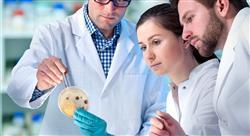 diplomado probióticos prebióticos microbiota y salud