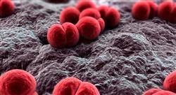 diplomado microbiota intolerancia y alergias