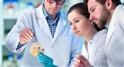experto microbiota piel l Tech Universidad