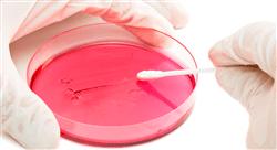 master enfermedades infecciosas y tratamiento antimicrobiano