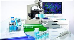 experto universitario monitorización de ensayos clínicos