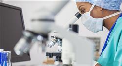 maestria online análisis clínicos