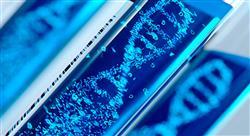 estudiar nutrición genómica y de precisión laboratorio bioestadística y mercado actual
