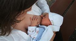 master lactancia materna