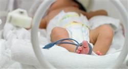 diplomado enfermedades y lactancia materna