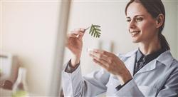 formacion fitoterapia y drogas vegetales