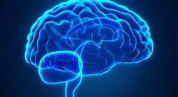 f infecciones sistema nervioso central farmaceuticos