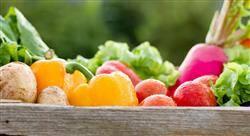 estudiar asesoramiento nutricional farmacéutico en diferentes patologías
