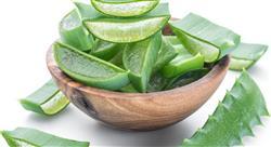 diplomado fitoterapia y drogas vegetales