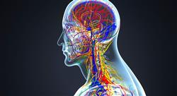 curso fitoterapia en afecciones del sistema nervioso
