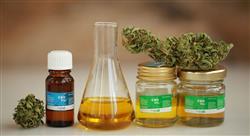 diplomado principios activos de las plantas formas farmacéuticas y preparados galénicos