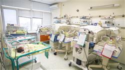 experto universitario cuidados enfermeria paciente pediatrico patologia hematologica maligna