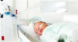 curso nutrición y patologías digestivas en la infancia para enfermería
