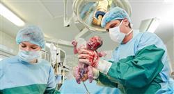 master obstetricia para matronas