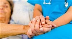 especializacion aspectos psicosociales en el paciente paliativo para enfermería