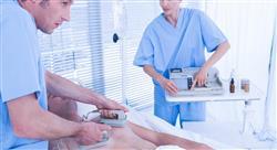 experto universitario aspectos bioéticos en  cuidados paliativos  para enfermería