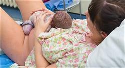 posgrado fisiología del trabajo de parto para enfermería
