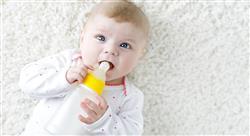 experto universitario fisiología y cuidados durante la lactancia materna para matronas