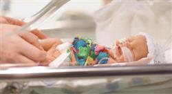especializacion online la unidad de cuidados intensivos neonatales para enfermería