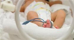 experto universitario la unidad de cuidados intensivos neonatales para enfermería