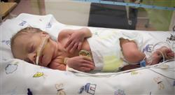 especializacion online cuidados críticos neonatales para enfermería