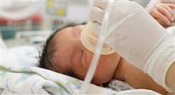 especializacion online cuidados en patología cardíaca y respiratoria del neonato para enfermería