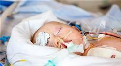 experto universitario cuidados en patología cardíaca y respiratoria del neonato para enfermería