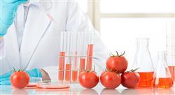especializacion online nutrición artificial pediátrica y dietética hospitalaria para enfermería