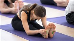 maestria online yoga terapeutico enfermeria