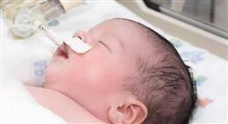 curso cuidados digestivos y metabólicos neonatales para enfermería