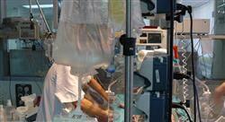 posgrado cuidados renales y hematológicos neonatales para enfermería