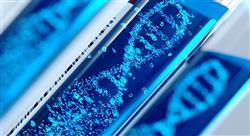 especializacion online nutrición genómica y de precisión laboratorio bioestadística y mercado actual para enfermería