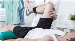 especializacion online fisioterapia pediátrica y abordaje terapéutico miembro inferior y superior en atención primaria