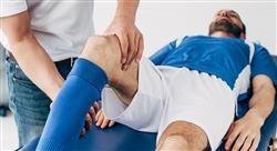 curso online prescripcion programacion entrenamiento fuerza fisioterapeutas Tech Universidad