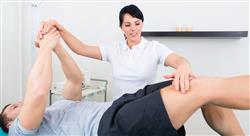 experto universitario prescripción metodología y bases para el entrenamiento de fuerza para fisioterapeutas