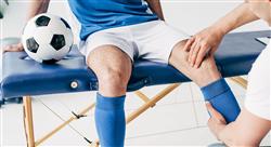 posgrado entrenamiento de la fuerza en los deportes de situación para fisioterapeutas