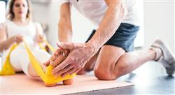 diplomado entrenamiento de fuerza para la mejora de las habilidades de movimiento para fisioterapeutas