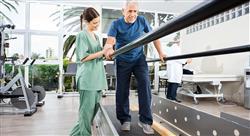 maestria fisioterapia neurologica enfermedades degenerativas