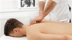 posgrado organizacion hospitalizacion domiciliaria fisioterapeutas