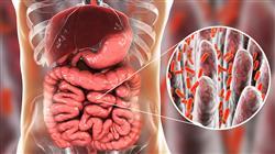 curso acreditado microbiota microbioma fisioterapeutas