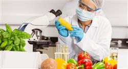 estudiar estion integral inocuidad industria alimentos bebidas