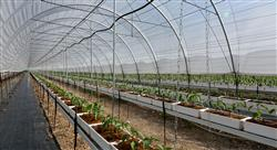 formacion validacion procesos sector agroalimentario nutricionistas