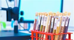 diplomado gestion certificacion inocuidad industria alimentaria nutricionistas