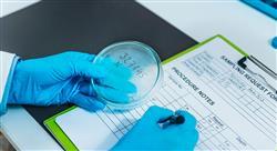 posgrado gestion certificacion inocuidad industria alimentaria nutricionistas