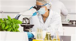 estudiar digitalizacion industria gestion calidad inocuidad nutricionistas