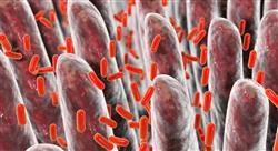 curso microbiota y microbioma para nutricionistas