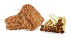 diplomado la intervención en el tabaquismo