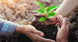 estudiar derechos humanos igualdad y derecho ambiental en psicología